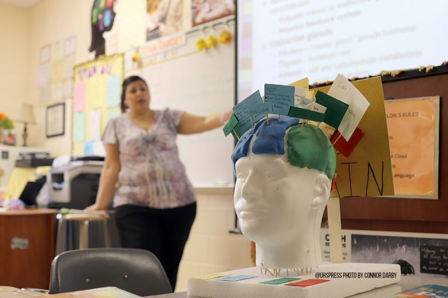 Colon teaches her students about the brain.