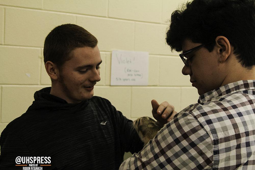 """(From left to right) Gently caressing the fuzzy hairs of the class ferret, sophomores Jordan Grasso and Jackson Howard admire the friendly animal with Howard holding him in his arms. """"Well when I was feeling all the animals, I thought that was kind of weird because I've never really touched a snake or a ferret or a rabbit before so that was very new for me,""""Grasso said. """"And since my sense of smell is sort of off, I couldn't smell any of the plants when we went outside. People would be like, 'oh it smells in here,' and I would never smell anything. And then they'd be like, 'smell the basil,' and I'm like, 'I don't smell anything,' so that part kind of stunk for me… I'd still probably do this again just for fun though."""""""